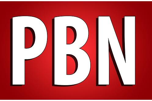 高速強力!GOOGLE1ページの表示を目指します。永久SEO!PBN投稿を高信頼フロードメインを作成します。