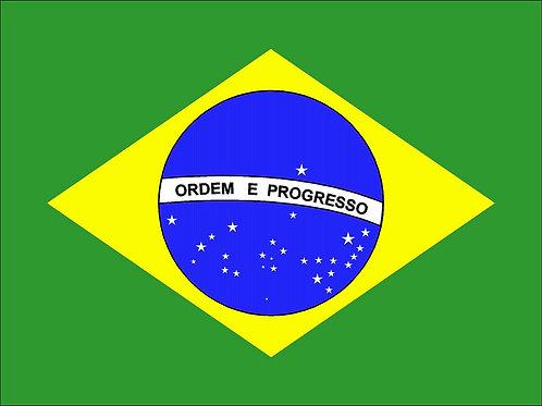 あなたのウェブサイトに本当の人を集客します。ブラジル (BRA) 約10000人~