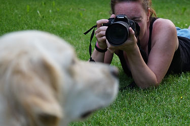 Pet Photography | Dog Photography