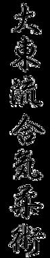 Daito Ryu Aikijujutsu, Martial Arts, Self Defense