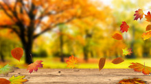 Outono de 2020, equinócio com esperança.