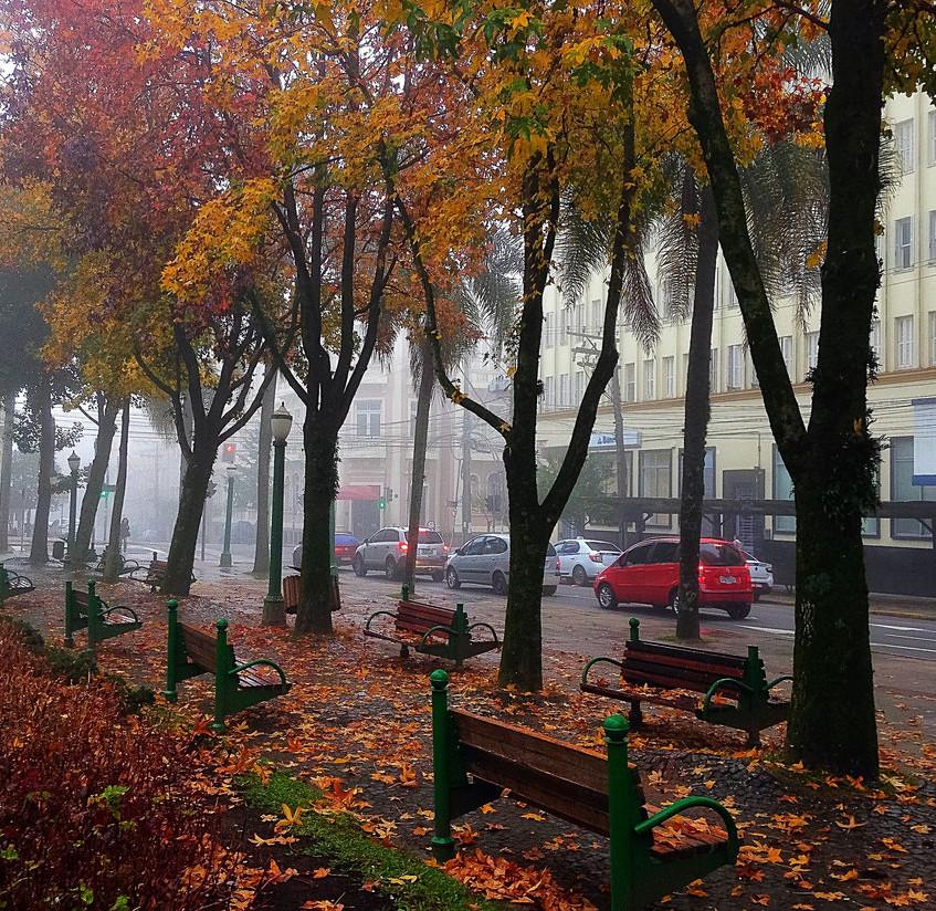 Imagens do Outono no RS