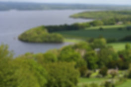 Shoreline of Lough Derg