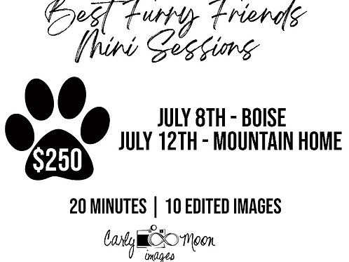 Best Furry Friends Mini Sessions