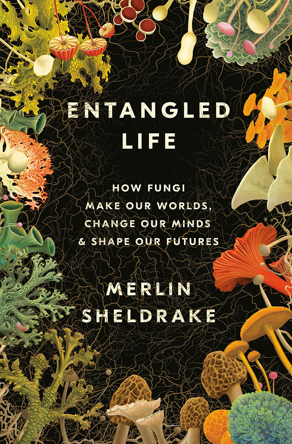 Cover image of the book Entangled Life by Merlin Sheldrake