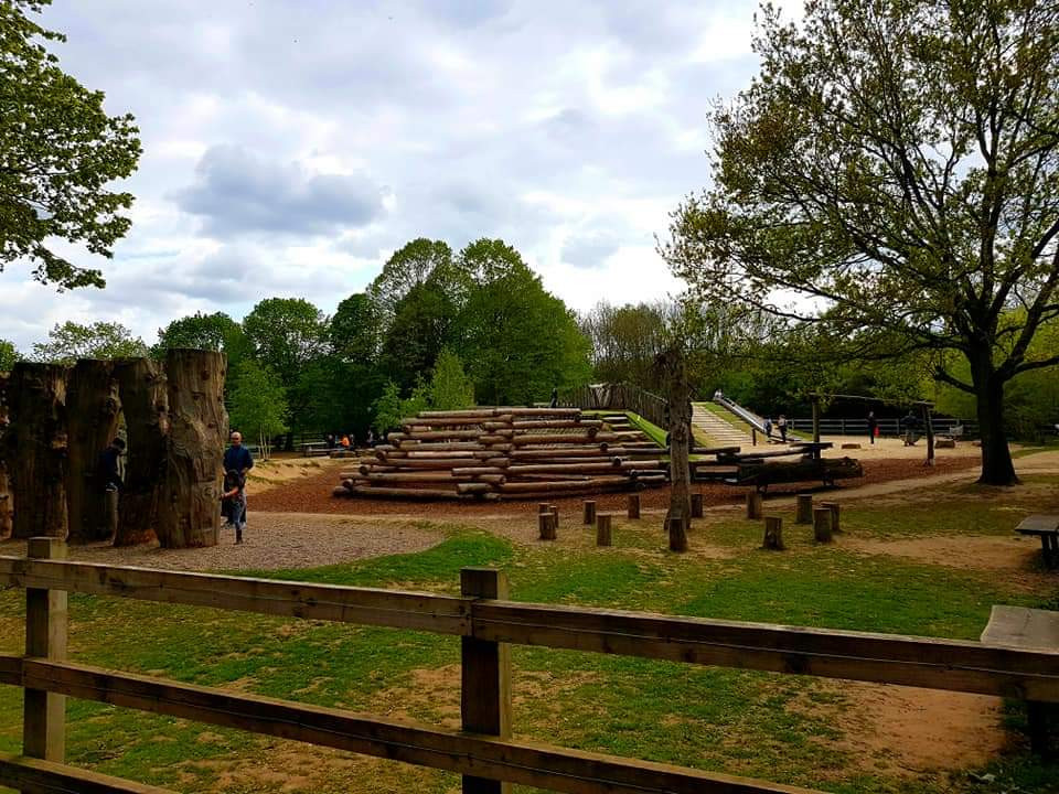 Dinton Pastures Country Park Family Kid Review