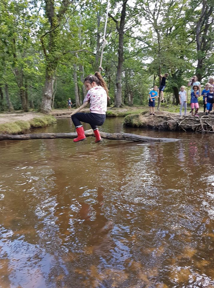 New Forest / outdoor days out with kids / free