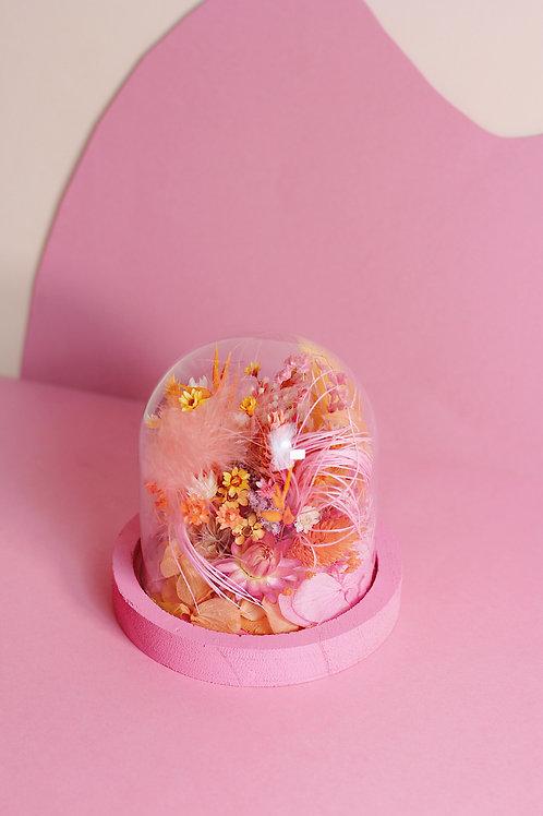 Petite cloche Abricot rose