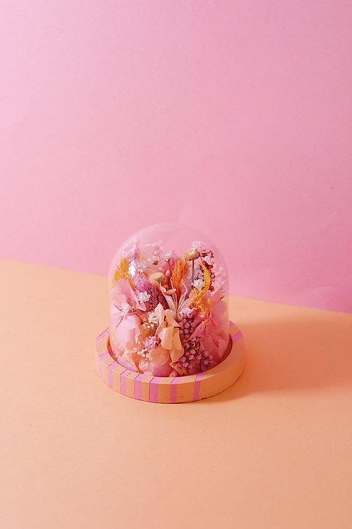 Petite cloche Berlingot Abricot