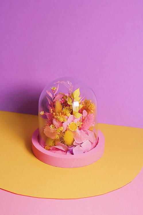 Petite cloche Citron rose