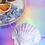 Thumbnail: Coquillage azur