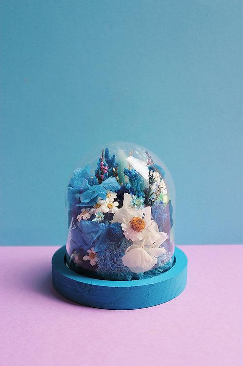 Myrtille bleue