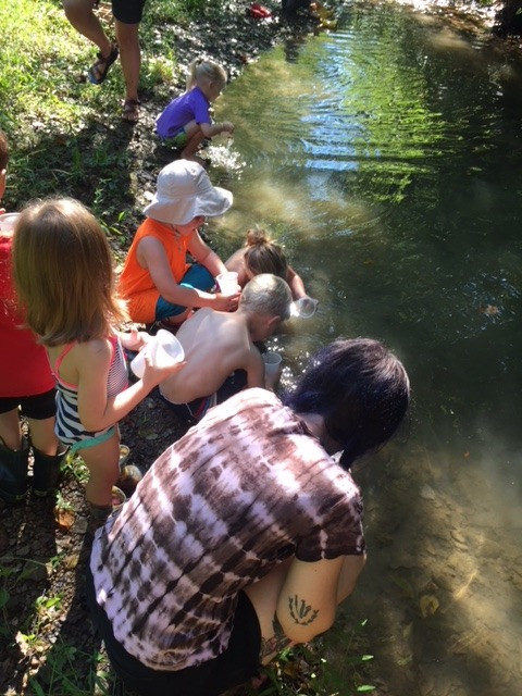 Forest School Begins