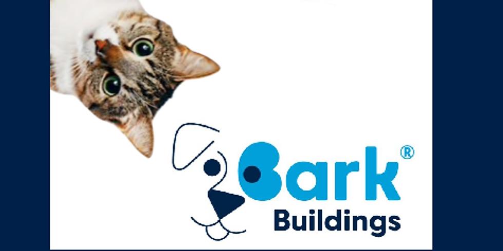 Cat Treat Baking by Bark Buildings