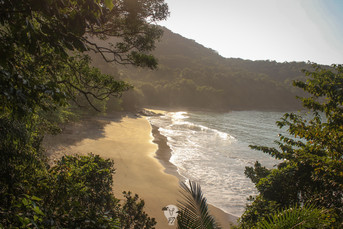 Praia do Cedro, Ubatuba - SP