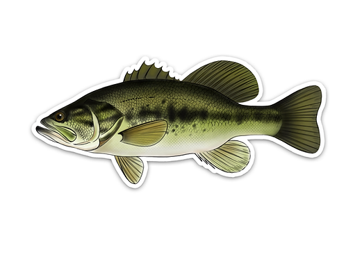 Largemouth Bass - Waterproof Sticker