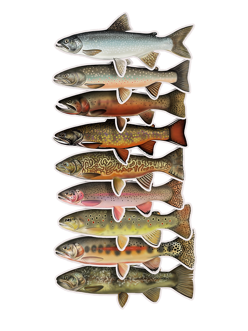 Trout Waterproof Sticker - Set 15% OFF