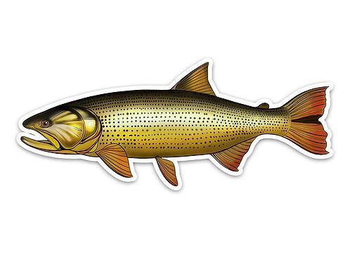 Golden Dorado - Waterproof Sticker