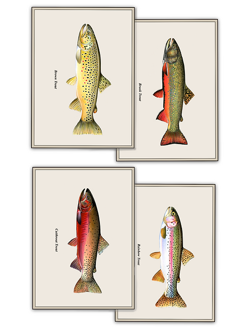 Trout Collection + Set Print