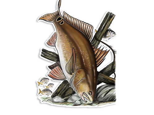 Redfish Illustration - Waterproof Sticker