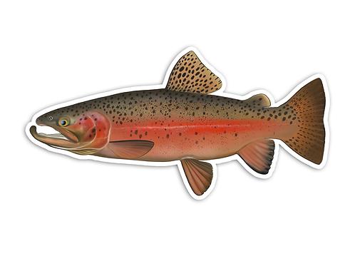 Rainbow Trout V2 - Waterproof Sticker