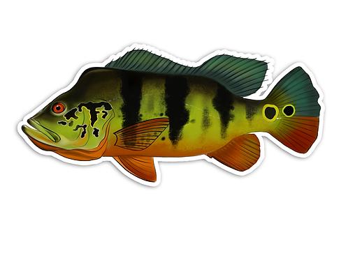 Peacock Bass (Male) - Waterproof Sticker