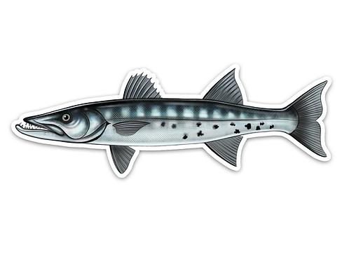 Great Barracuda- Waterproof Sticker
