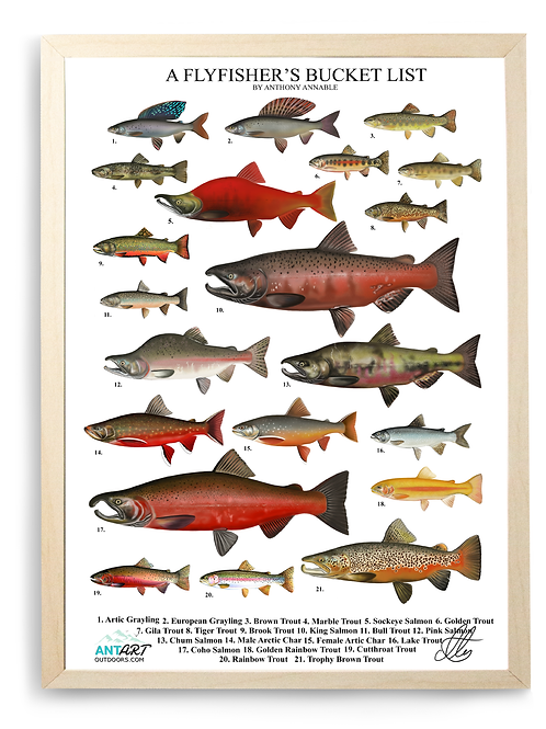 A Flyfisher's Bucket List - Poster Print