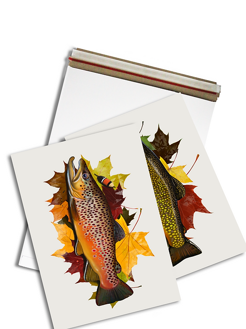 Autumn Trout Illustration - Prints