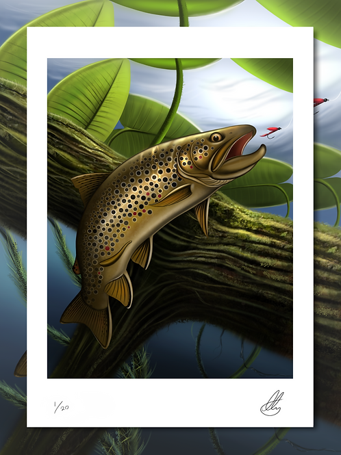 River Brown Trout - Limited Print (1/20)