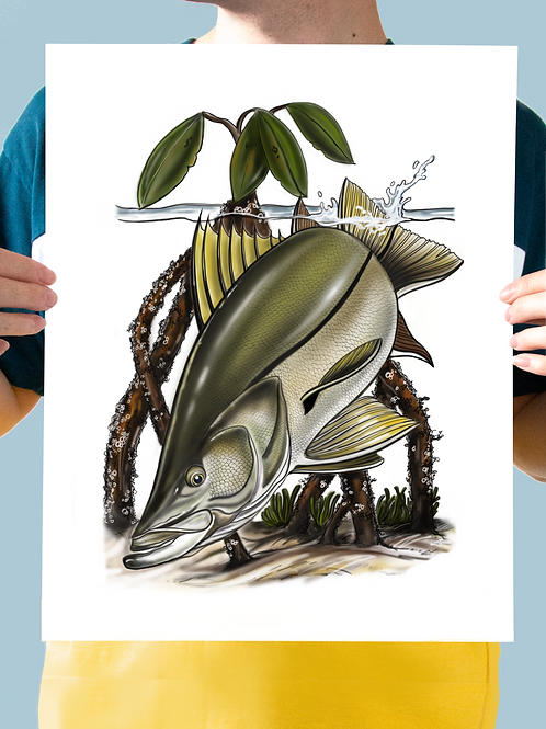 Snook Illustration - Print
