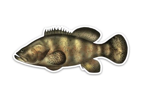 Goliath Grouper - Waterproof Sticker