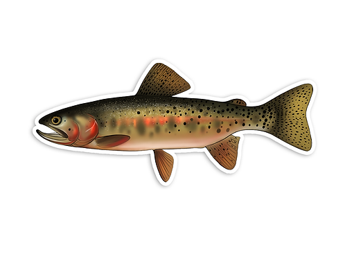 Cutthroat Trout V1 - Waterproof Sticker