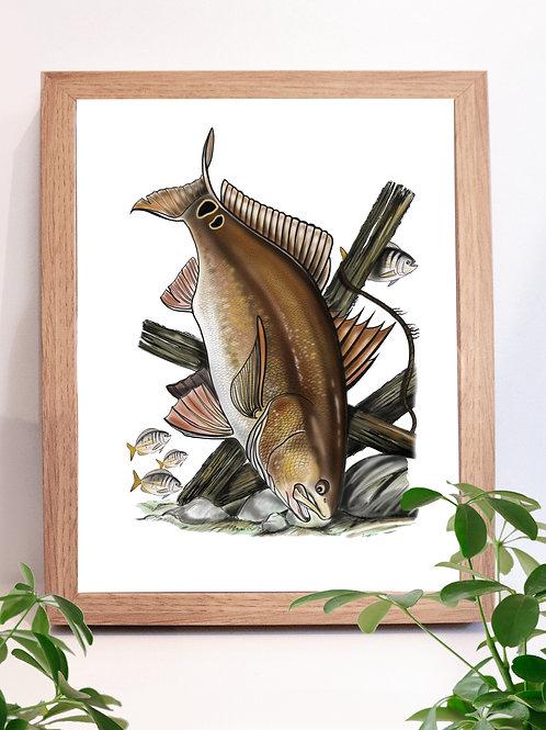 Redfish Illustration - Print