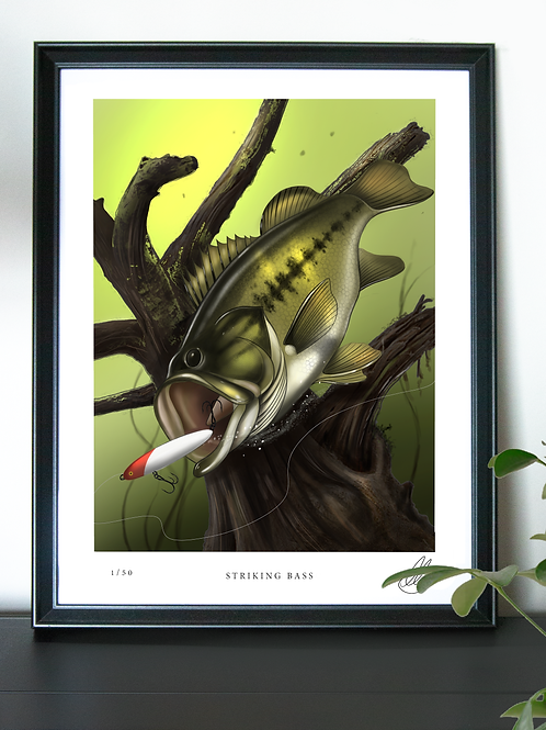 (Limited Edition) Striking Bass - Poster