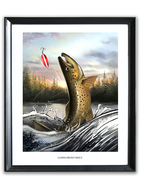 Leaping Brown Trout - Full Print