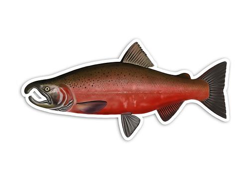 Coho Salmon - Waterproof Sticker