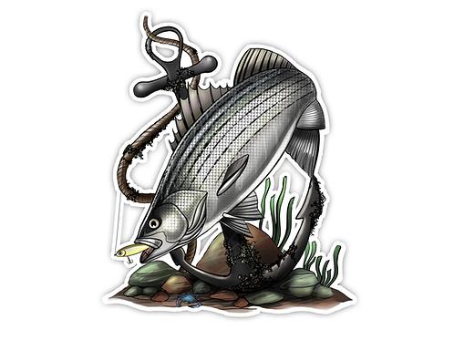 Striped Bass Illustration  - Waterproof Sticker