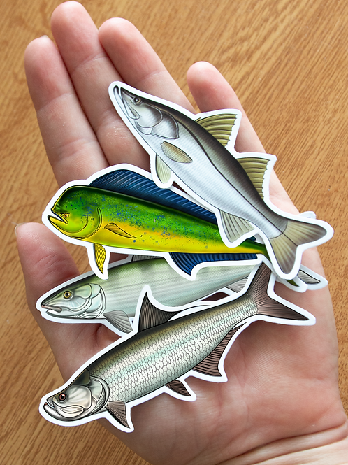 Tarpon/Bonefish/Snook/Mahi - Magnets