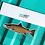 Thumbnail: Atlantic Salmon Spawning - Magnet
