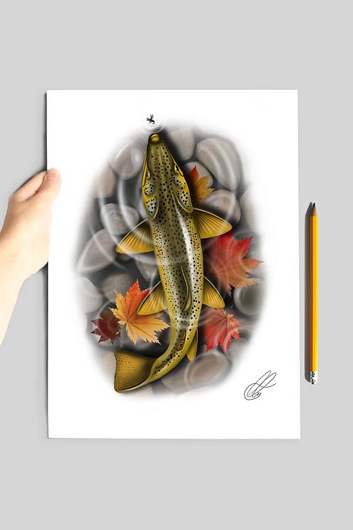 Autumn Buck Brown - Print