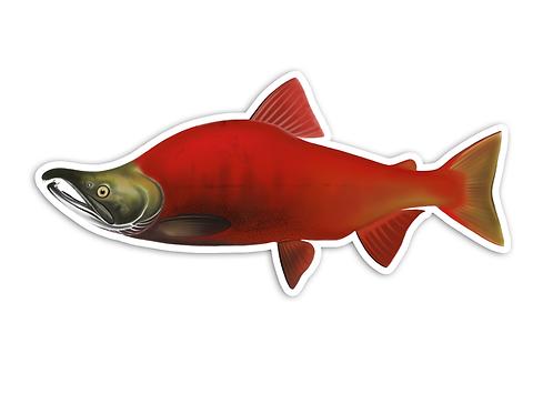 Sockeye Salmon - Waterproof Sticker