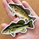Thumbnail: Small/Largemouth- Magnets