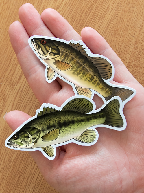 Small/Largemouth- Magnets