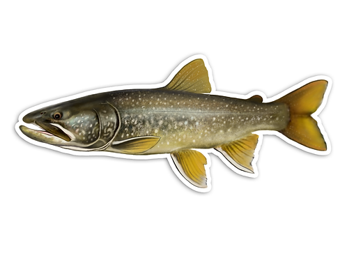 Trophy Lake Trout - Waterproof Sticker
