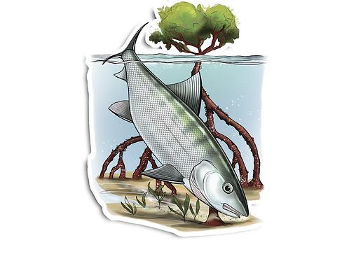 Bonefish Illustration  - Waterproof Sticker