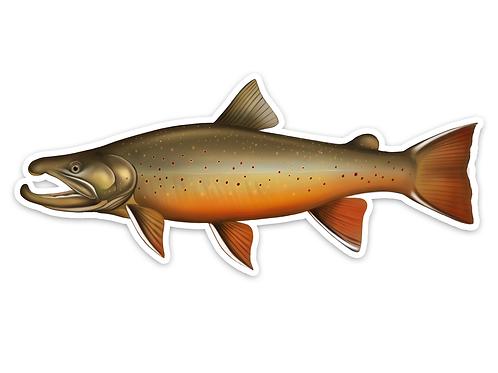 Big Bull Trout - Waterproof Sticker