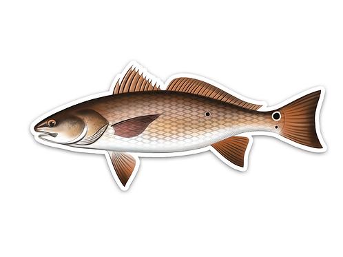 Redfish - Waterproof Sticker