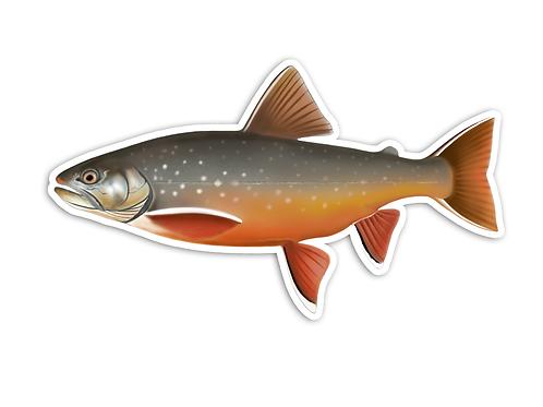Arctic Char (Female) - Waterproof Sticker