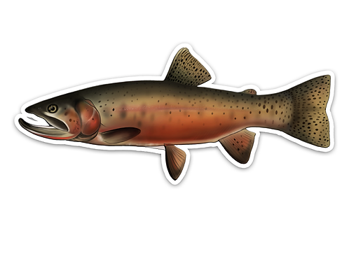 Cutthroat Trout - Waterproof Sticker